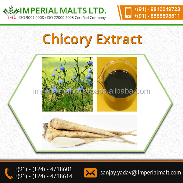 Chicory Extract Contains Various Soluble Fibers And Vitamins