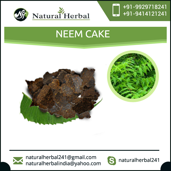 Pure and Organic Neem Cake | Organic Fertilizer Neem Cake for Sales