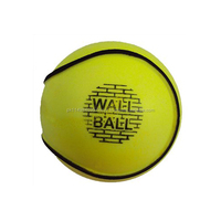 All weather Wall balls Champion Wall Ball Hurling Yellow color water proof