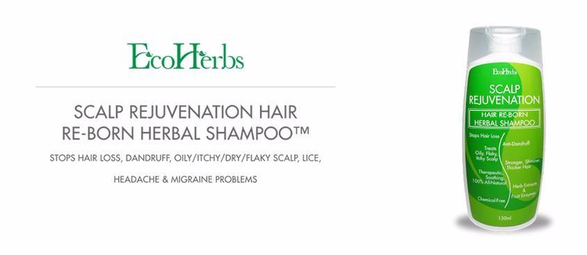 Ecoherbs Scalp Rejuvenation Hair Re-born Herbal Shampoo For Hair ...