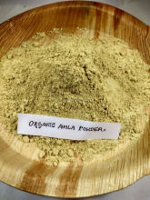 Kiwi fruit extract powder/Indian Gooseberry extract