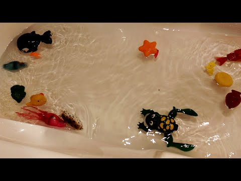 Water Toys Play Set | Sea Animal Toys | Lake Animals Toys and Figures Set