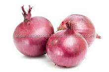 bulk indian Red Onion