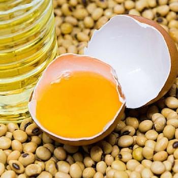 Delicious Crude Soybean Oil