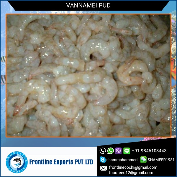 Fresh Vannamei White Shimp Suppliers for Export