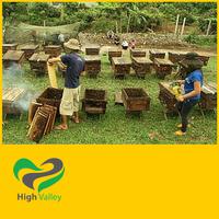 Wild flower honey 100% natural - best price for bulk