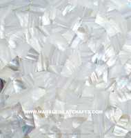 Mother Of Pearl Shell Mosaic Tile Manufacturer For Kitchen & Bathroom