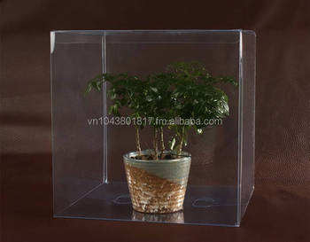 Transparent plastic boxes for plant PP PVC PET in Vietnam