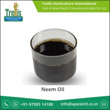 Water-Soluble Soil Nourishing Neem Oil from Well Known Exporter