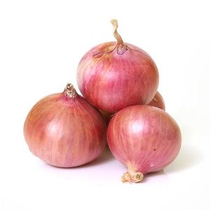 fresh bellary red onion for sale