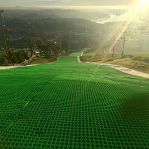Artificial grass ski