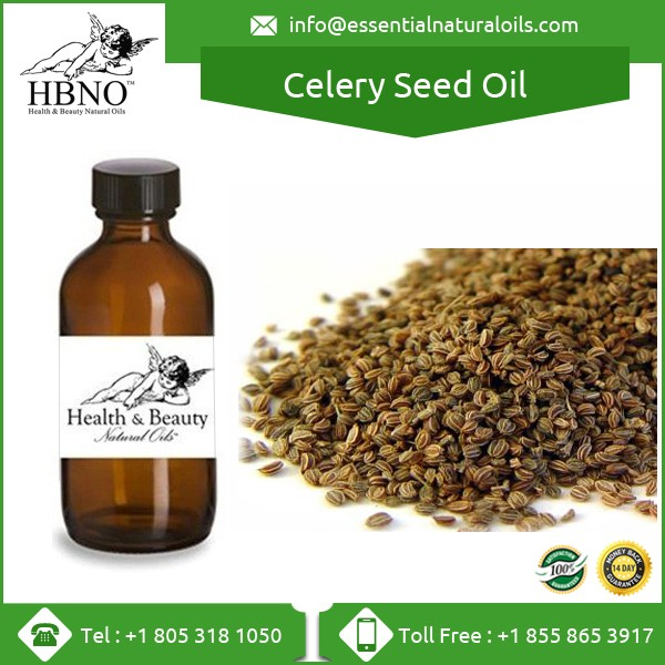 Top Selling High Quality Celery Seed Oil/ Celery Seed Essential Oil
