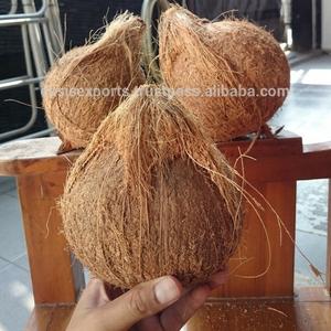 Dubai Fresh Coconut Supplier