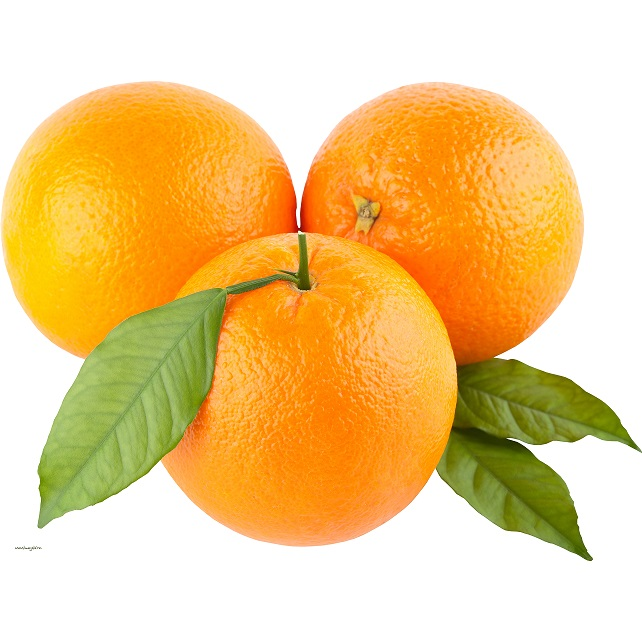 Fresh Orange - Washington / Taburi Oranges - Planet Israel