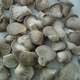 Frozen IQF baby oyster mushroom