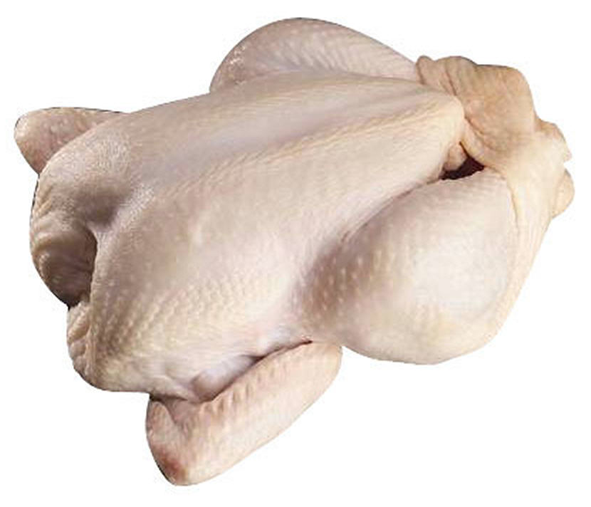 whole frozen chicken suppliers