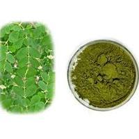 Factory price bulk moringa seeds /Moringa benefits for health