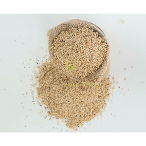Bulk Organic White Sesame Seeds Price