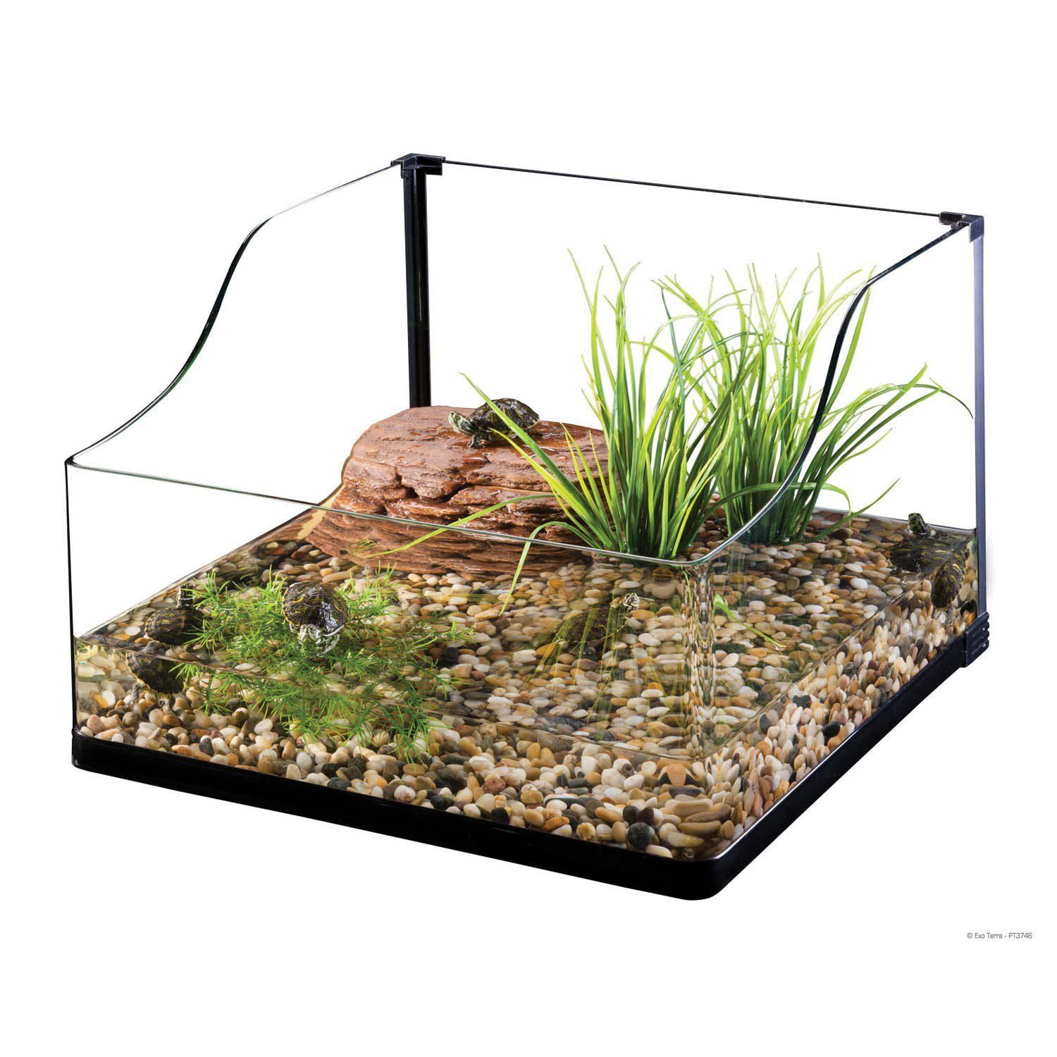 Exo Terra Bent Glass Turtle Terrarium, 18 by 18 by 8-Inch