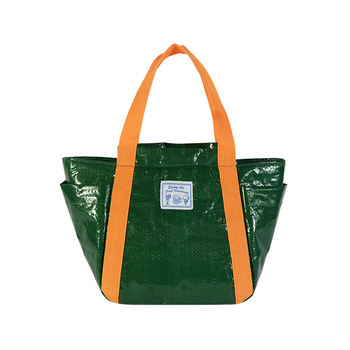 Green Insulated Lunch Tote for frozen food