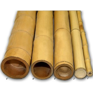 Wholesale solid bamboo well treated from Vietnam