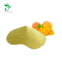 Mango Fruit Juice Concentrate Powder / High Quality Spray Dried Instant Fruit Powder