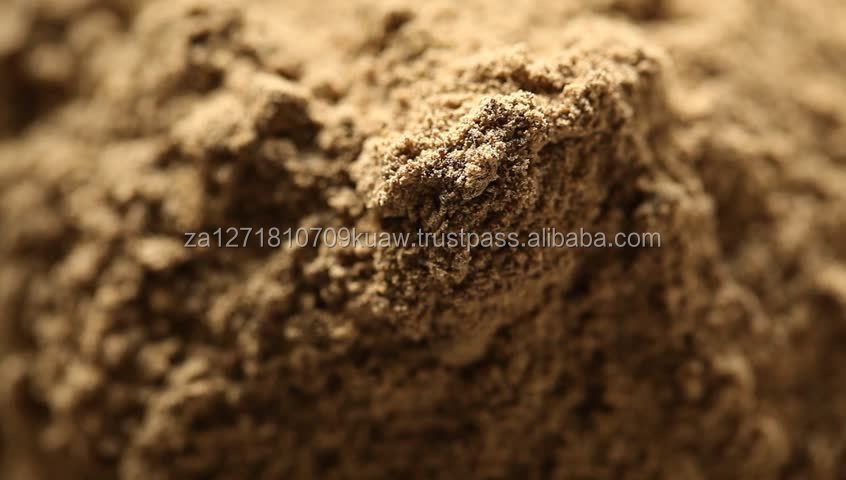 Sea shell meat powder for fish and shrimps and animal feed