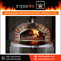 Wood Fired Brick Oven Outdoor Portable Gas Fired Commercial Pizza Oven