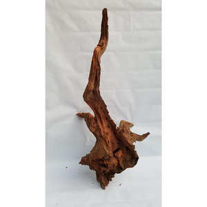 Supplier Of Natural Driftwood For Aquarium At Lowest Market Price