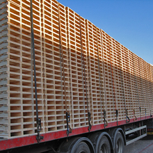 यूरो कल्पना <span class=keywords><strong>लकड़ी</strong></span> pallets