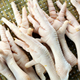 FROZEN USA PREMIUM QUALITY CHICKEN FEET, PAWS, WINGS, GIZZARDS