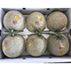 Japanese fruit fresh hard sweet crown melons with best quality
