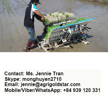 RICE TRANSPLANTER SPW - 48C - KUBOTA AGRICULTURAL MACHINE, MADE IN THAILAND, BIG SALE, DELIVER WORLDWIDE - WALKING MACHINE