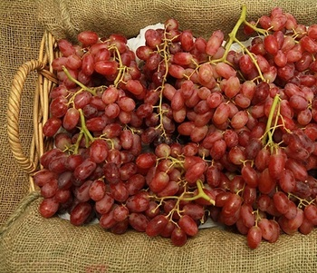 Image of Grapes Crimson Seedless (~9kg)