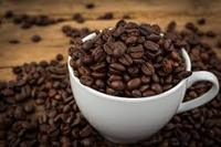 Arabica Toraja Green Coffee Beans (Grade 1) for sale