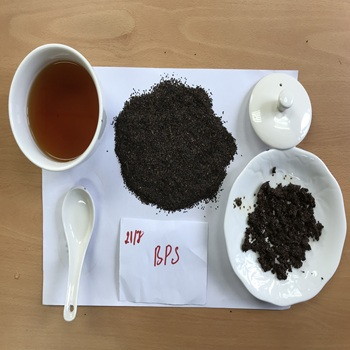 High Moutain Vietnam Tea Paris Green Tea Grade BPS-1006