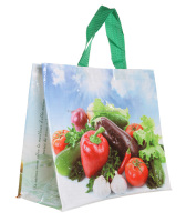 Cheap Gift Custom Printed Recyclable Promotional Pp Non Woven Fabric Bag for shopping