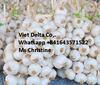 /product-detail/new-harvest-fresh-garlic-from-viet-nam-50037554960.html