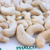 GOOD QUALITY OF CASHEW NUTS FROM PHALCO VIET NAM