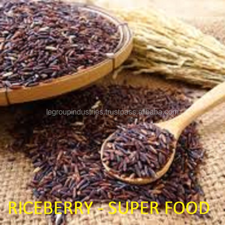 Riceberry Red Rice Supplier