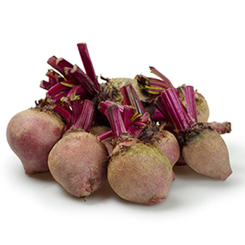 Red Beet/ Dried Betroot/ High nutrition, Best Price