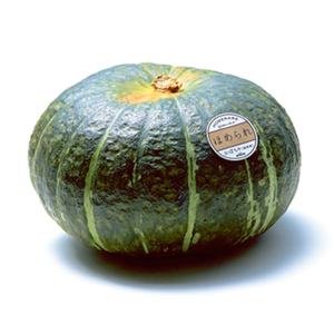 Alibaba Best Pure and Natural Japanese Pumpkin