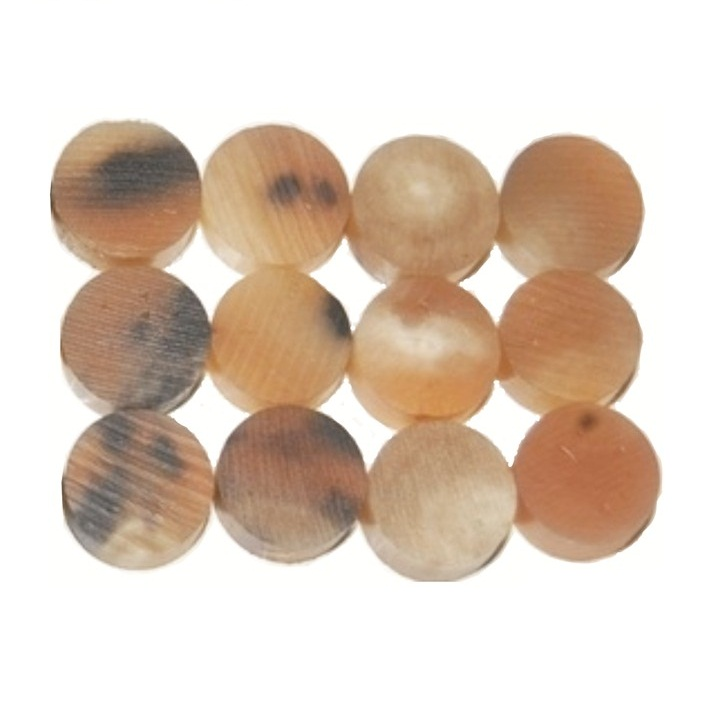 Color number 3 Buffalo Ox Horn Button Blanks