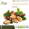 Hot Selling Genuine Supplier of Organic Brazil Nuts Wholesale