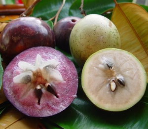 Star Apple Fruit In Pakistan