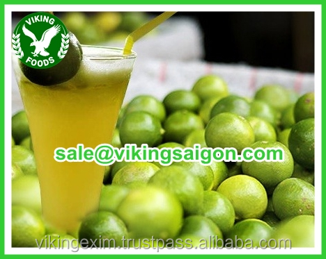 BEST PRICE_FRESH CALAMANSI _HIGH QUALITY