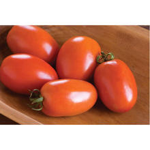 <span class=keywords><strong>Tomates</strong></span> fraîches à vendre
