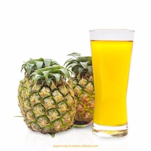 Frozen or Aseptic pineapple concentrates for soft drinking