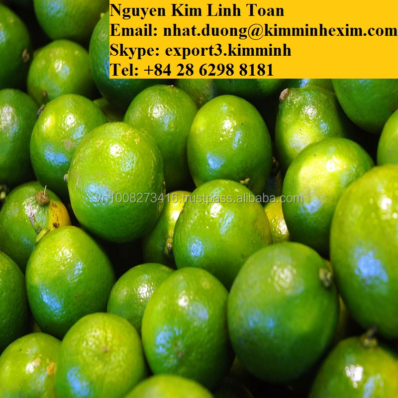 FRESH CALAMANSI FRUIT