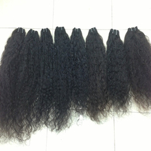 Unprocessed 100% Virgin Human Southeast Asian Hair Curly Style 30Inch